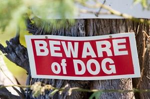 beware_dog_3974262.jpg
